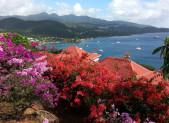 En Guadeloupe, ça chaloupe !
