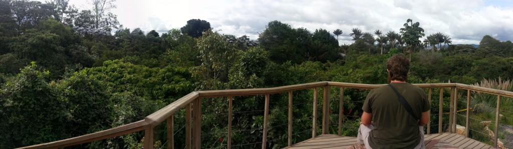 jardin botanique, bogota