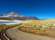 Road trip chilien avec Noë